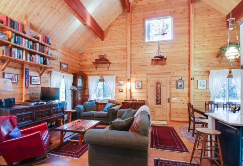 Family-friendly lodge with bikes, jetted tub, & ramp access - Image 1 - South Lake Tahoe - rentals