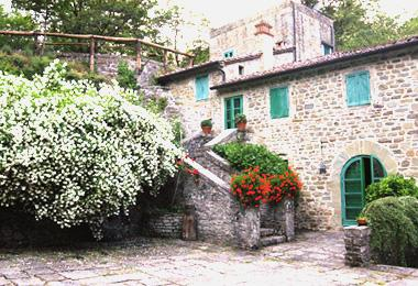 Capraia - Image 1 - Terranuova Bracciolini - rentals