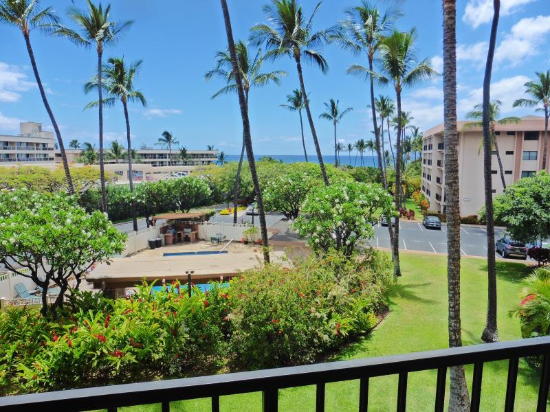 "Aloha-inducing palm trees, hibiscus, plumerias... and ocean view from your lanai - ""Kihei Akahi D-211: Ocean View, Opposite Kamaole Beach, Remodeled"" - Kihei - rentals"