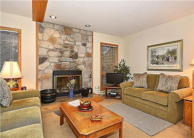 Deerfield Village 042 - Image 1 - Canaan Valley - rentals