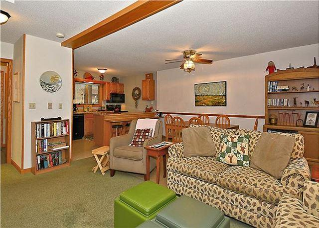 Deerfield Village 077 - Image 1 - Canaan Valley - rentals