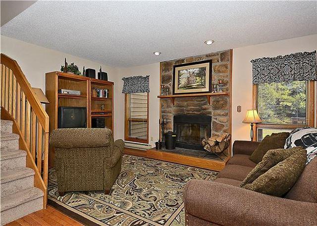 "Deerfield Village 136  ""Four Big Bears"" - Image 1 - Davis - rentals"