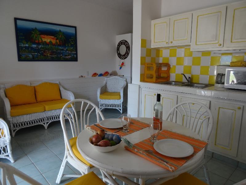 Apt 2 bedrooms, 100m from the sea - Image 1 - Las Terrenas - rentals