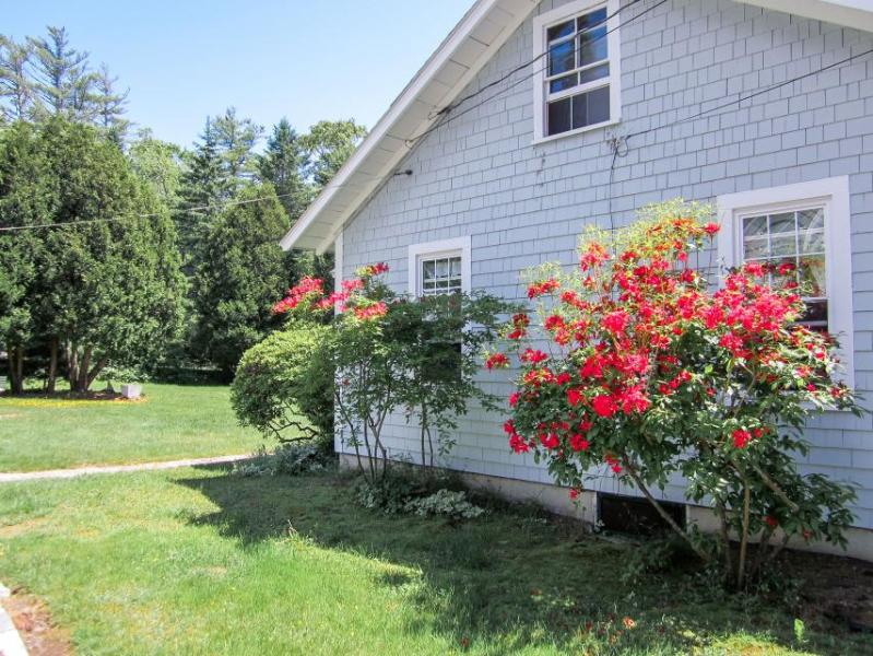 Charming, dog-friendly cottage near aquarium - minutes from Boothbay Harbor! - Image 1 - Boothbay Harbor - rentals