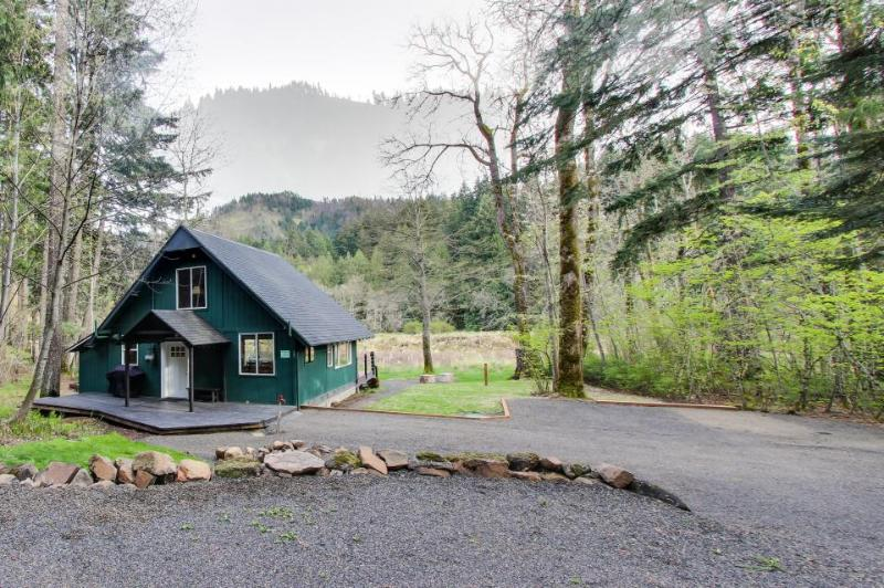 Modern waterfront cabin w/ river access & great views surrounded by nature - Image 1 - White Salmon - rentals