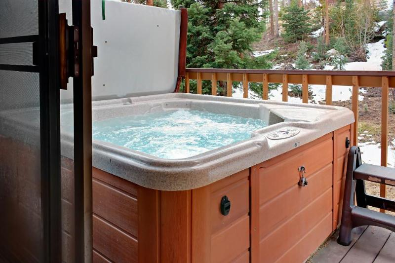 Townhouse w/ hot tub & jet tub, views of Continental Divide - Image 1 - Winter Park - rentals