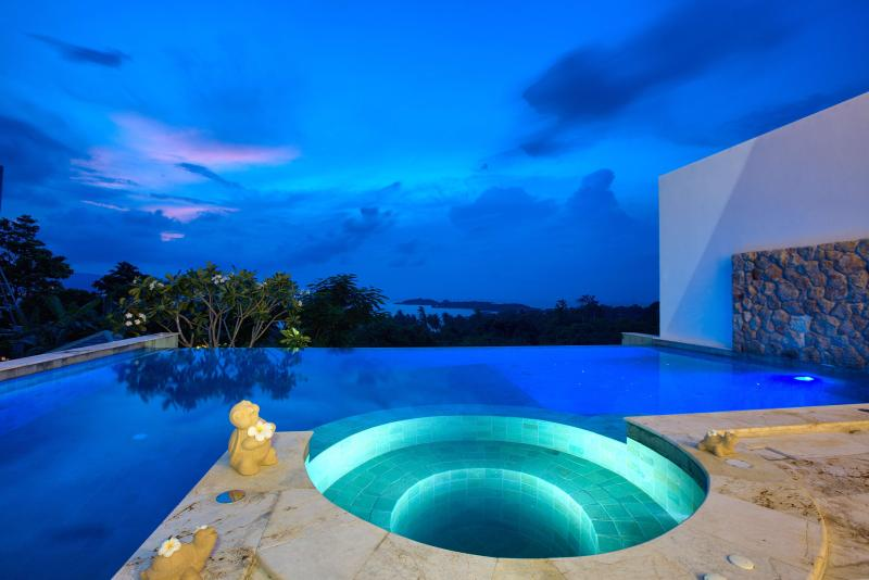 Villa HaiYi with Infinity Pool - Image 1 - Chaweng - rentals