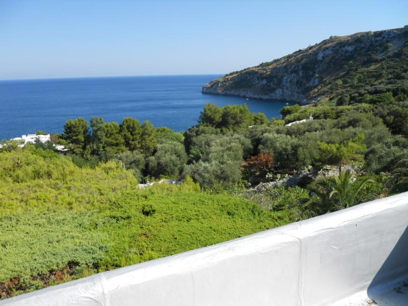Chicca - seaview - Seaside house in Marina Serra - Marina Serra - rentals