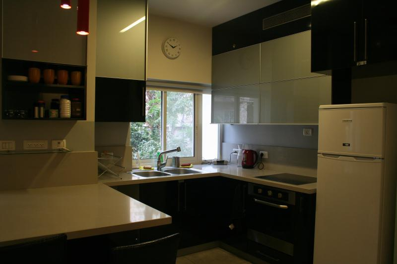 All you need for Perfect holiday! - Image 1 - Jerusalem - rentals