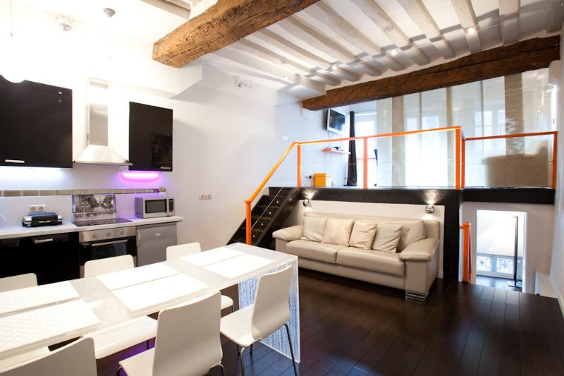 Centrally Located Vacation Apartment in St. Germai - Image 1 - Paris - rentals