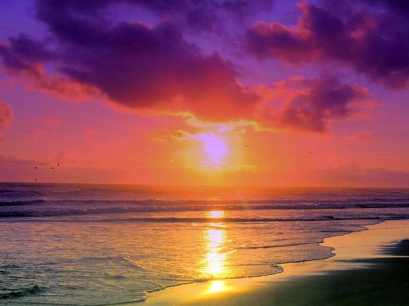 Heart of Ocean Drive One Bedroom Condo BEST RATES! 1CM1BZB - Image 1 - Miami Beach - rentals