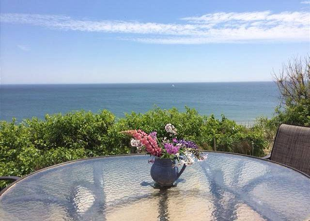 New Listing! Rare Oceanfront Cottage in Eastham! - Image 1 - Eastham - rentals