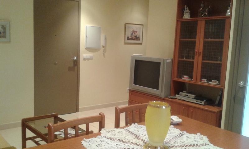 SALOON - Camarasa Apartaments For Rent. Cal Benet Del Manig - Province of Lleida - rentals