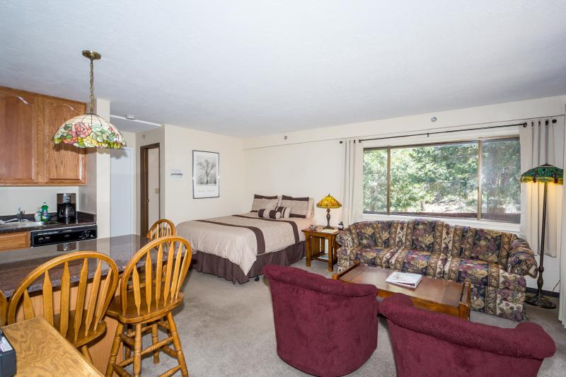 View of the condo with your queen size bed and living area with queen sofa sleeper. - The Perfect Little Studio Condo Inside the Gates o - Yosemite National Park - rentals