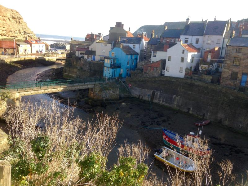 view of our house from across the beck - Pelican, Staithes - Staithes - rentals