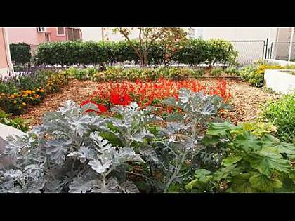 garden - 6036 A4(3) - Makarska - Makarska - rentals