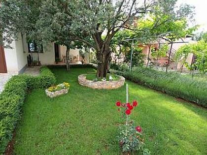 garden (house and surroundings) - 7885 SA5(2) - Fazana - Fazana - rentals