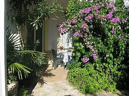 A2(6): terrace - 00705SFIJ  A1(6) - Sveti Filip i Jakov - Sveti Filip i Jakov - rentals
