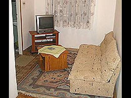 A3(2+1): living room - 2317 A3(2+1) - Biograd - Biograd - rentals