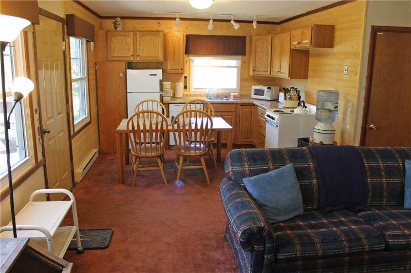 Located at Base of Powderhorn Mtn in the Western Upper Peninsula, A Charming Home with Large Outdoor Sauna & Allows Dogs - Image 1 - Bessemer - rentals