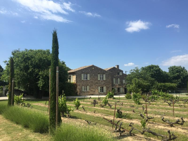 View of the house from the driveway - La Groumelle - Menerbes - rentals