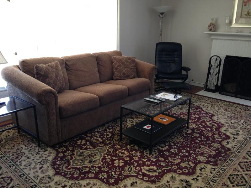 Living Room w/sleeper sofa - Spacious Flat in the heart of the Gourmet Ghetto - Berkeley - rentals