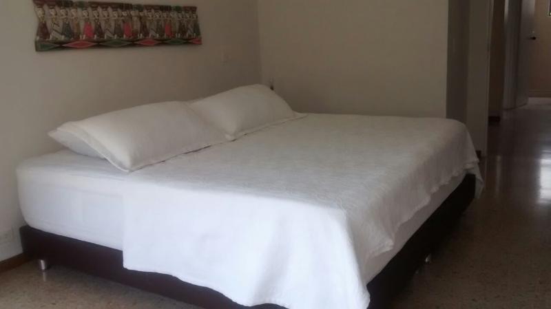 Large Condo with Pool - WALK TO LLERAS :) - Image 1 - Medellin - rentals