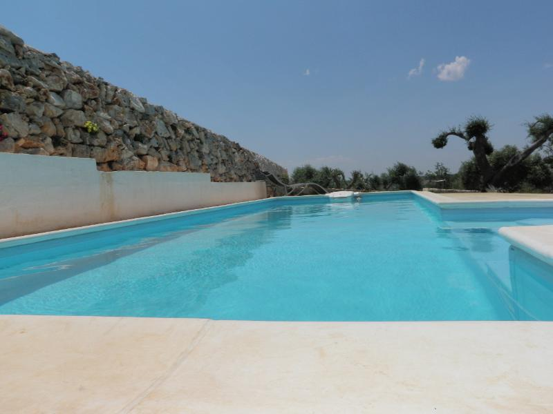 pool - Ostuni, Puglia Italy      Luxury Villa with Pool - Ostuni - rentals