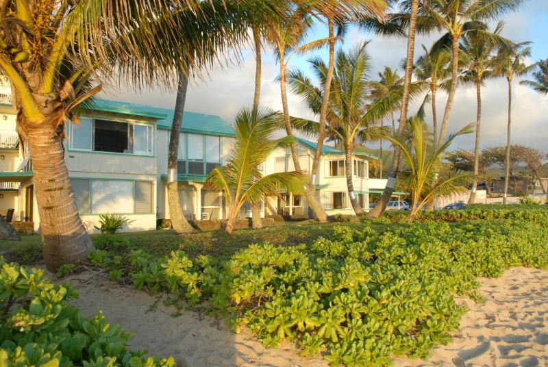 View of cottage from beach. - Beach front cottage with stunning views of sunrise - Hauula - rentals