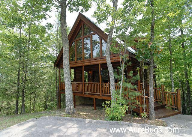 Smoky Mountain Cabin Beary Secluded 296 - Image 1 - Sevierville - rentals