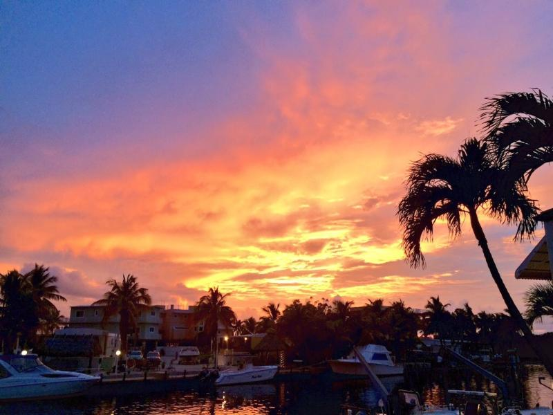 Spectacular sunsets await you as you enjoy the end of another Florida Keys day - Florida Keys Splendor at Hammer Point - Tavernier - rentals
