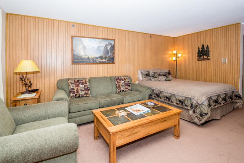 View of the living area with queen size sofa sleeper and queen bed. - Remodeled Studio Condo Inside the Park! - Yosemite National Park - rentals