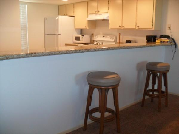 SAIDA II #202: 1 BED 2 BATH - Image 1 - South Padre Island - rentals