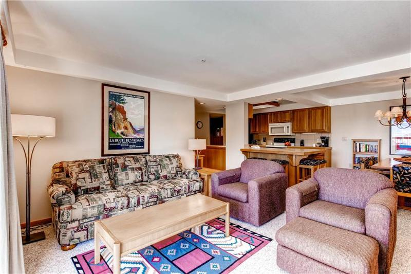 Torian Plaza 704 - Image 1 - Steamboat Springs - rentals
