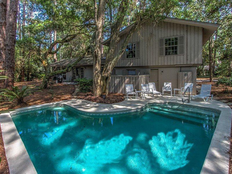 4 Cedar Wax Wing - Image 1 - Sea Pines - rentals