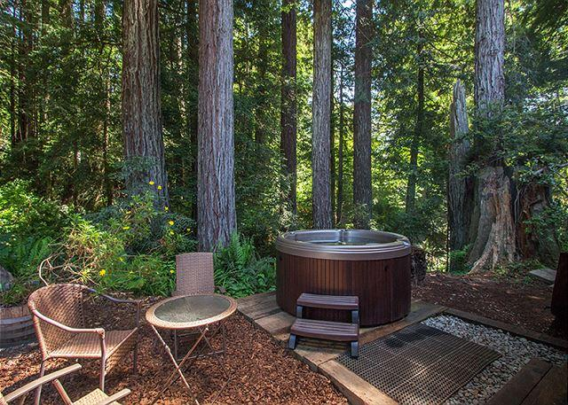 Soak in the hot tub while soaking  up  Redwood views! - Soak in the hot tub surrounded by Evergreens & ferns and listen to the creek! - Trinidad - rentals
