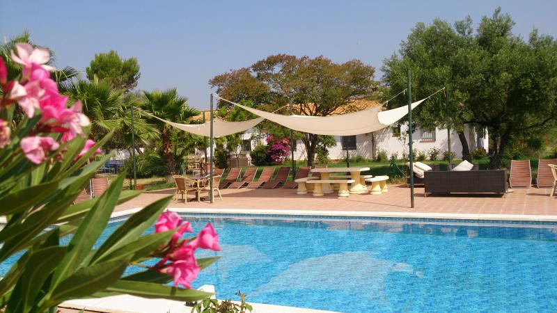 swimming pool - Luxury 11 bedroom Cortijo with large private pool - Seville - rentals