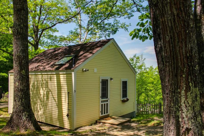 Cozy and bright dog-friendly cottage with woodland views - Image 1 - Edgecomb - rentals