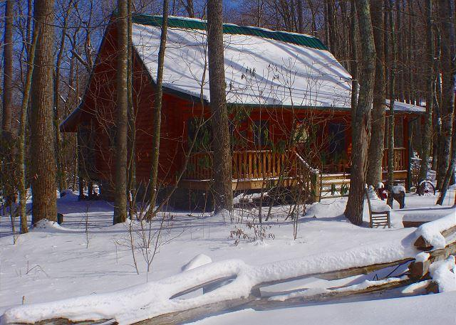 Creekside Cabin w/Hot Tub, WiFi, & Fire Pit! Decorated For Christmas! - Image 1 - Todd - rentals