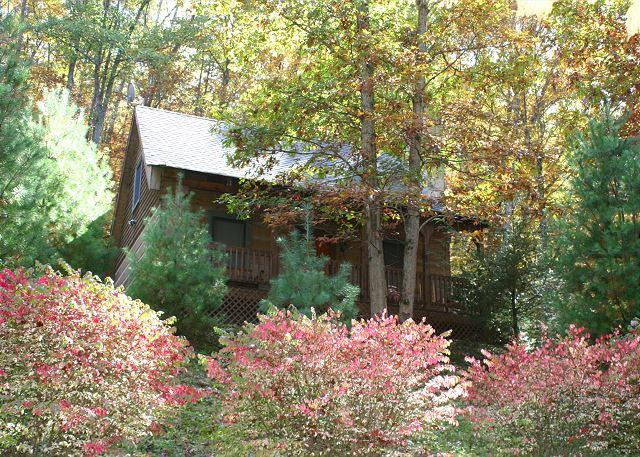 Quiet setting-great area for walking-beautiful cabin! - Cabin With WiFi, Fireplace & Fenced In Yard! Lower Summer Rates! - Fleetwood - rentals