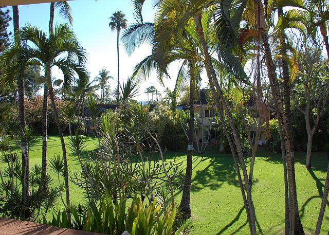 40-2 Beautiful oceanview home- close to pools and clubhouse - Image 1 - Lahaina - rentals