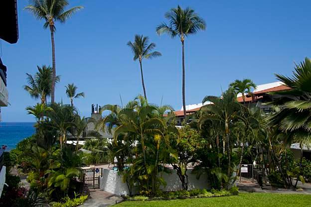 Casa De Emdeko #203 - Image 1 - Kailua-Kona - rentals