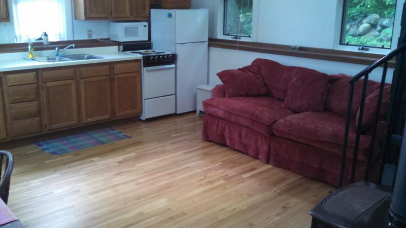 100 yards to beach on Lake Geneva WI - Image 1 - Fontana - rentals