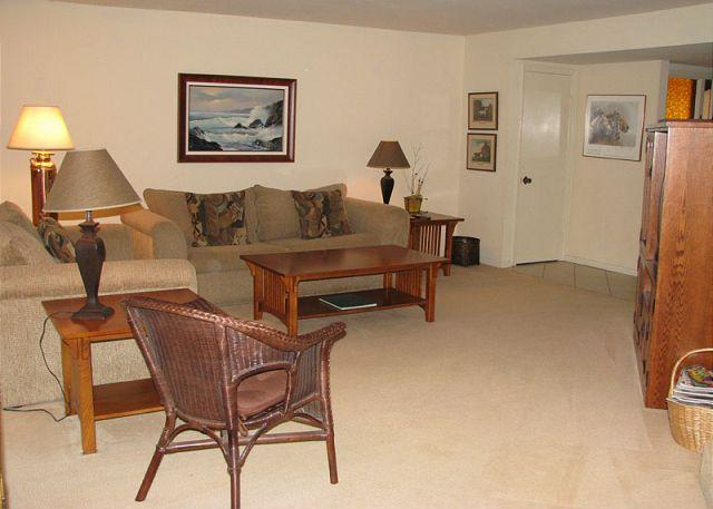 Living Room - 2 Bedroom, 2 Bathroom Vacation Rental in Solana Beach - (DMBC148SS) - Solana Beach - rentals