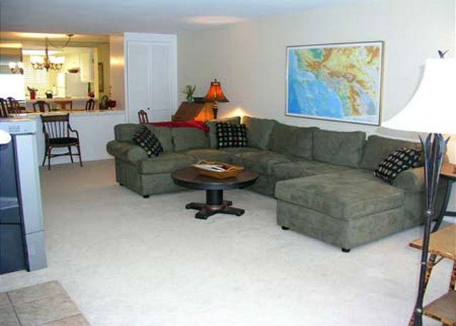 Living Room - 2 Bedroom, 2 Bathroom Vacation Rental in Solana Beach - (SONG9) - Solana Beach - rentals