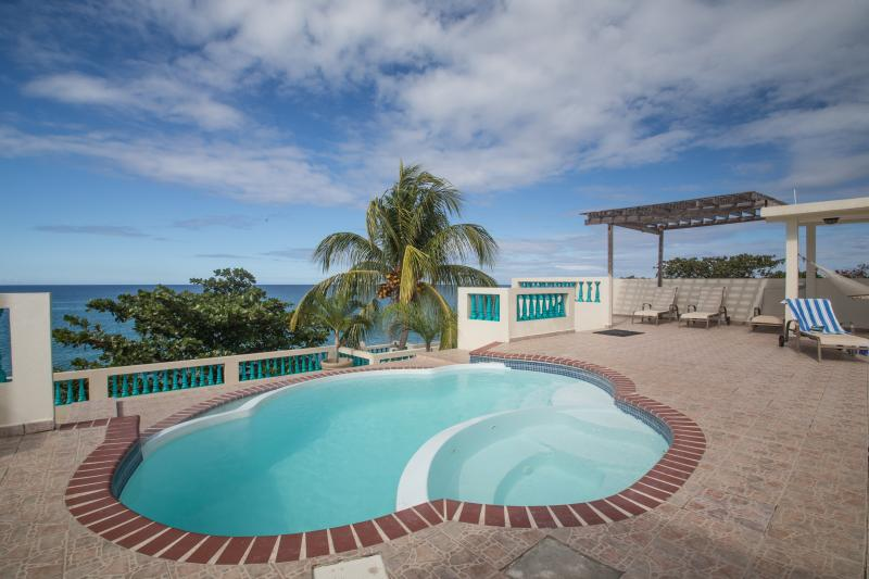 Sunset Paradise Oceanfront Villas: 1 to 23 bedroom - Image 1 - Rincon - rentals