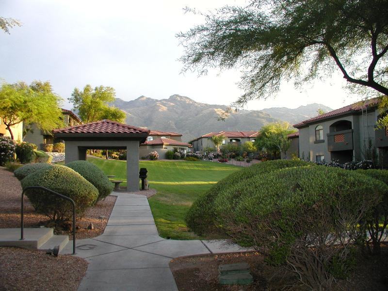 View from outside the condo - Mountain Views, steps to the pool - Tucson - rentals