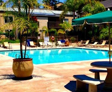 Enjoy the communal pool. - La Jolla Executive Retreat - La Jolla - rentals