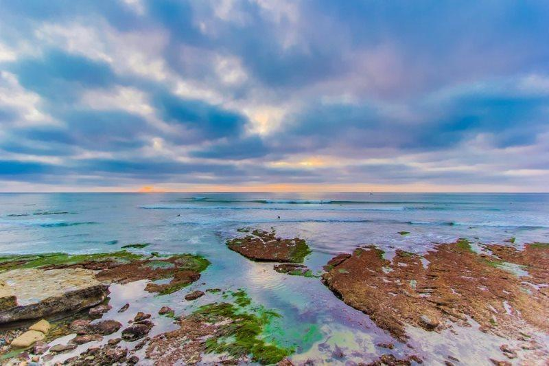 Walk a few blocks to Sunset Cliffs and enjoy some spectacular sunset views! - The Bonaire Studio with Ocean View from Yard - Dog friendly with a hot tub and fire pit - Pacific Beach - rentals