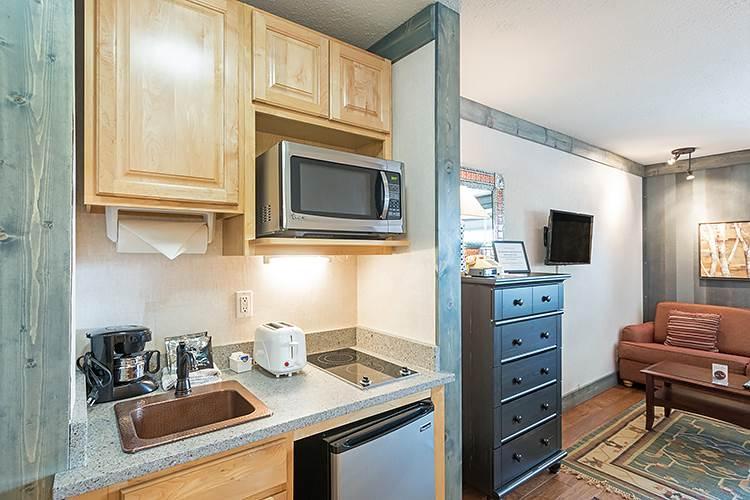 Mountainside Inn #116 - Image 1 - Telluride - rentals